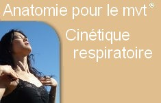 Cinetique respiratoire