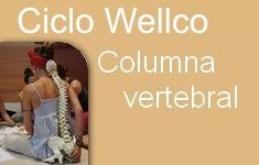 01 columna vertebral wellco