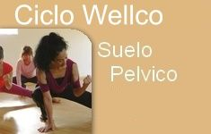 Curso Suelo Pelvico wellco