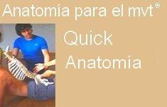 53 Curso Quick anatomía ES